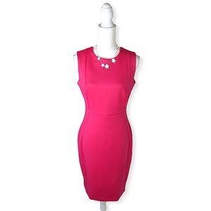 Calvin Klein Sleeveless Scuba Dress Pink 8 NWT